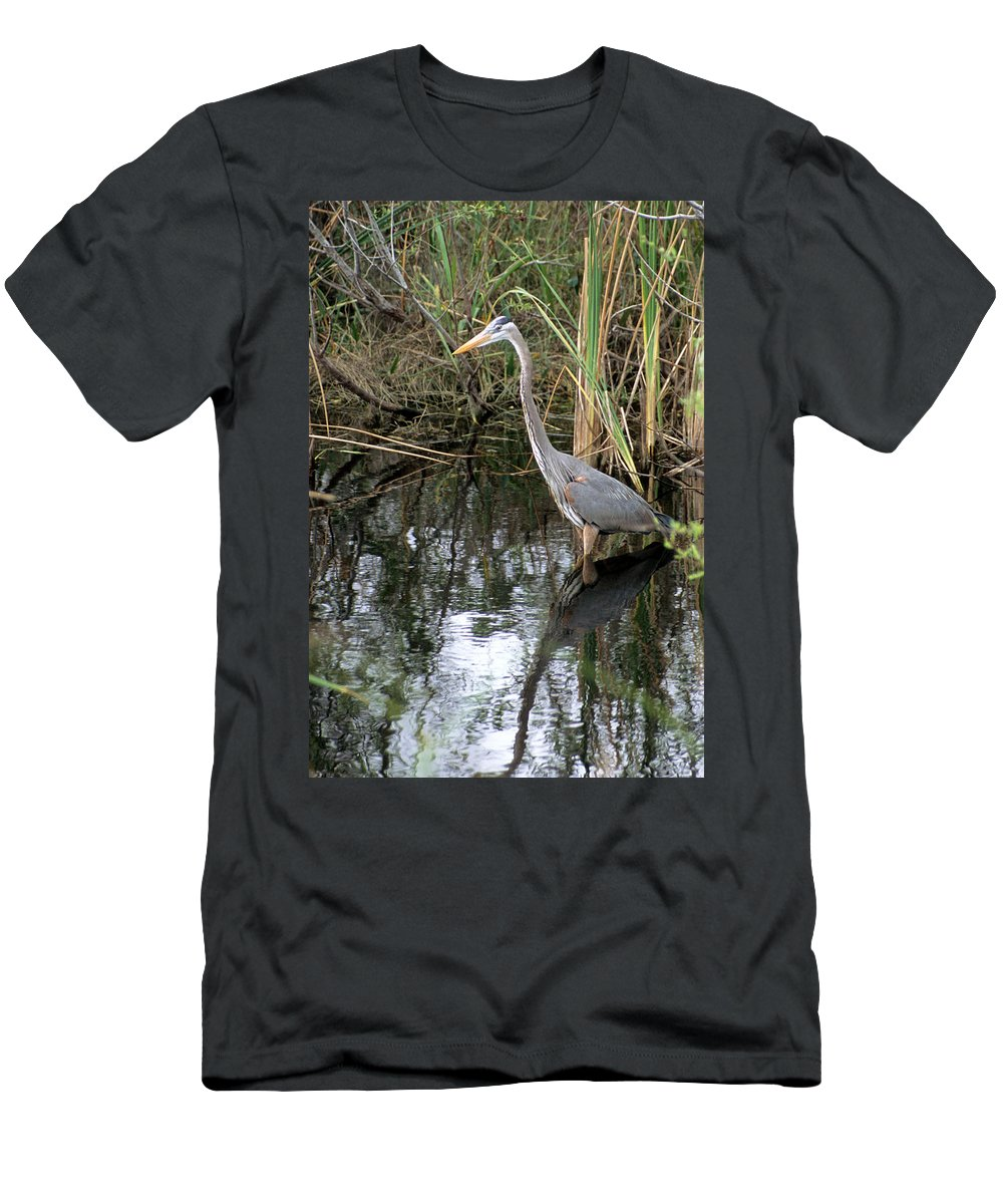 Great Blue Heron Men's T-Shirt (Athletic Fit) featuring the photograph Wading Great Blue Heron by Larry Allan