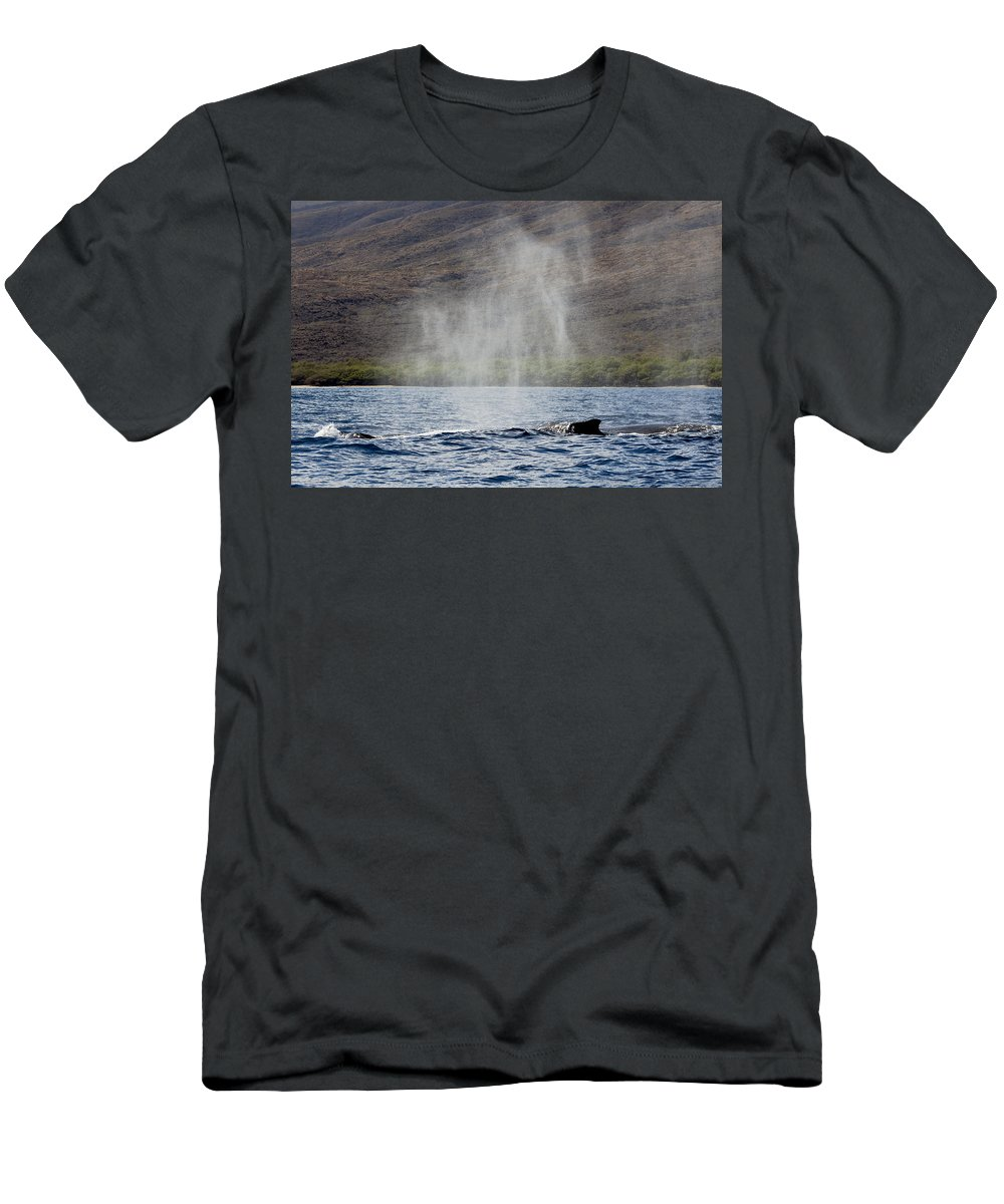 Animal Men's T-Shirt (Athletic Fit) featuring the photograph Water From A Whale Blowhole II by Dave Fleetham