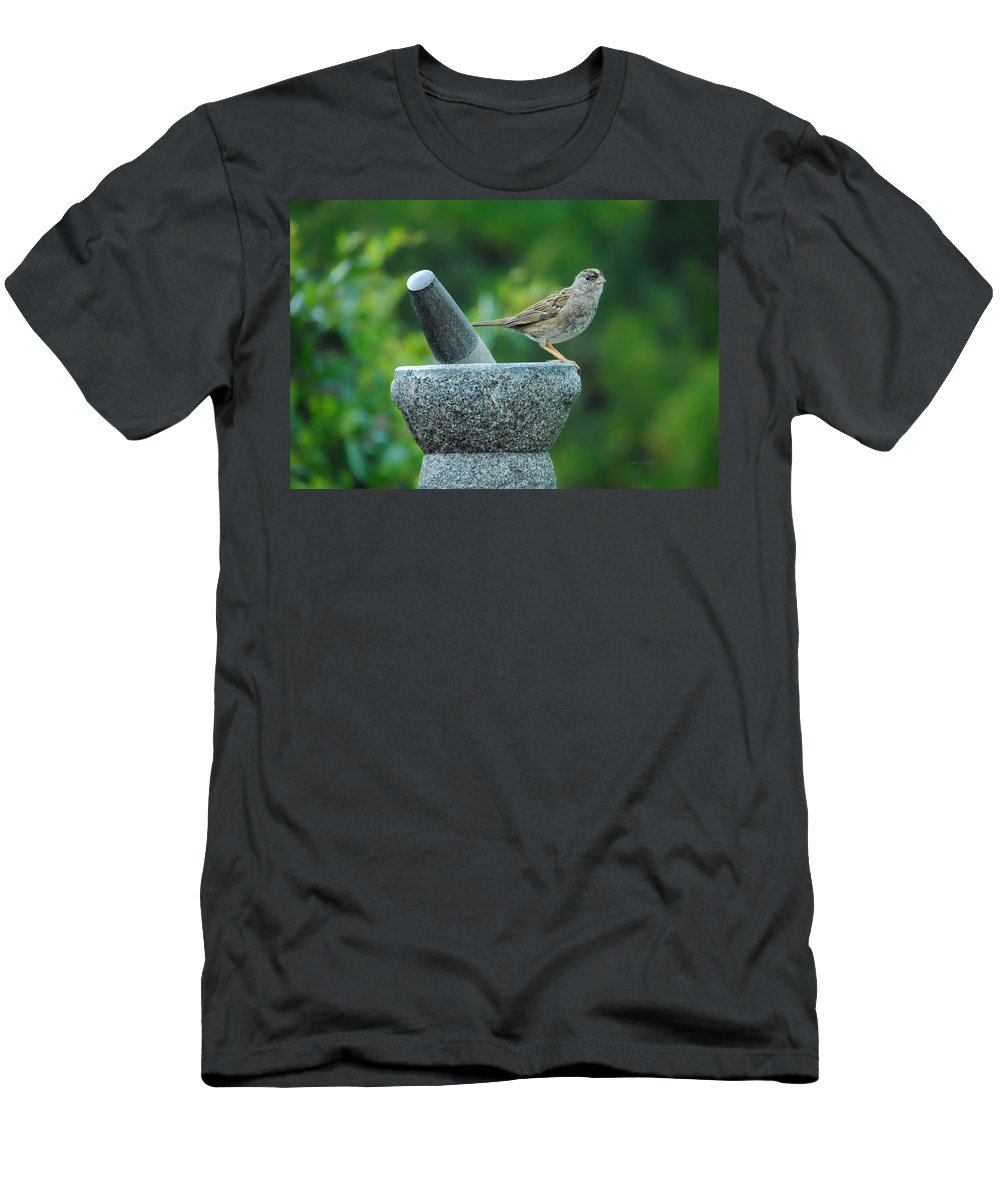 Sparrow Men's T-Shirt (Athletic Fit) featuring the photograph Well Grounded by Donna Blackhall
