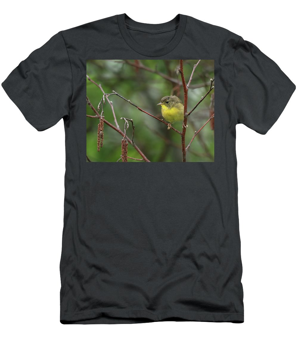 Nature Men's T-Shirt (Athletic Fit) featuring the photograph Yellowthroated Warbler by Susan Capuano