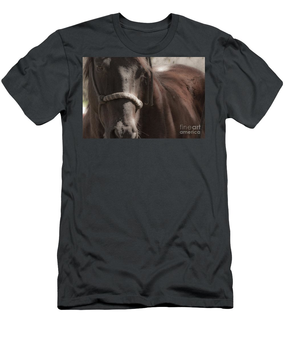 Horse Men's T-Shirt (Athletic Fit) featuring the mixed media Yesterday by Kim Henderson