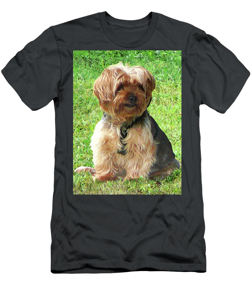 Dog Men's T-Shirt (Athletic Fit) featuring the photograph Yorkshire Terrier In Park by Susan Savad