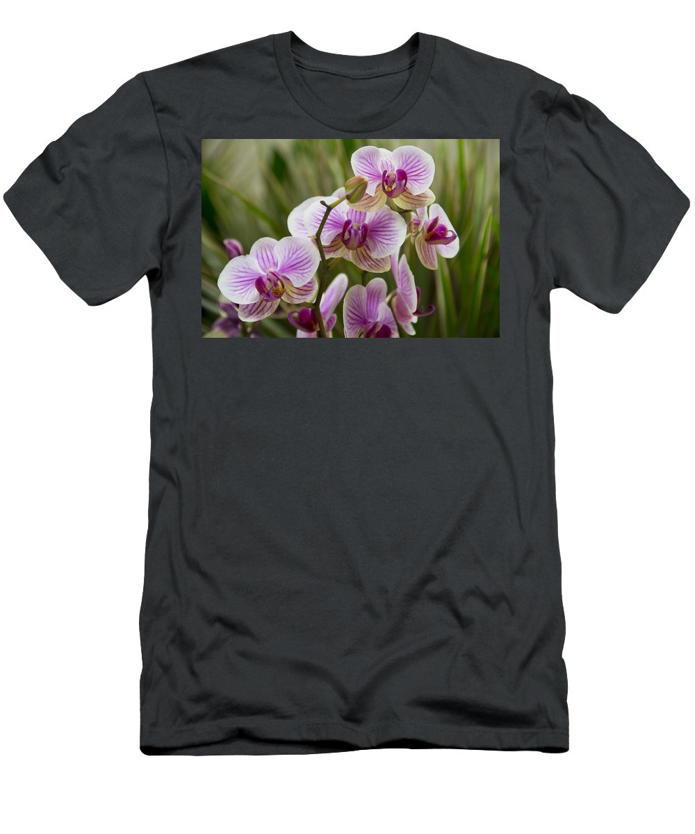 Exotic Men's T-Shirt (Athletic Fit) featuring the photograph Zen Garden by Angelina Vick