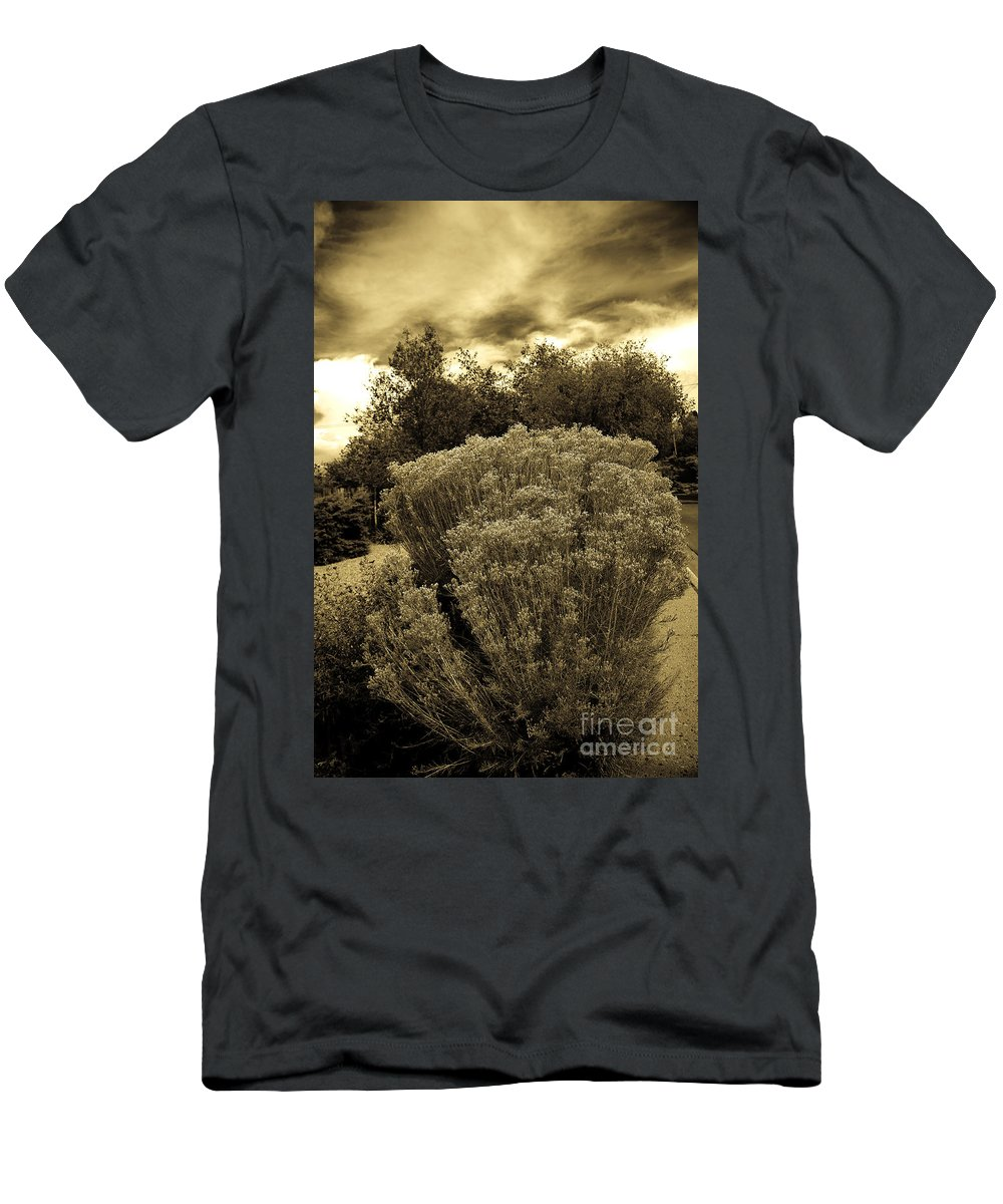 Shrub Men's T-Shirt (Athletic Fit) featuring the photograph Shrub In Santa Fe by Madeline Ellis
