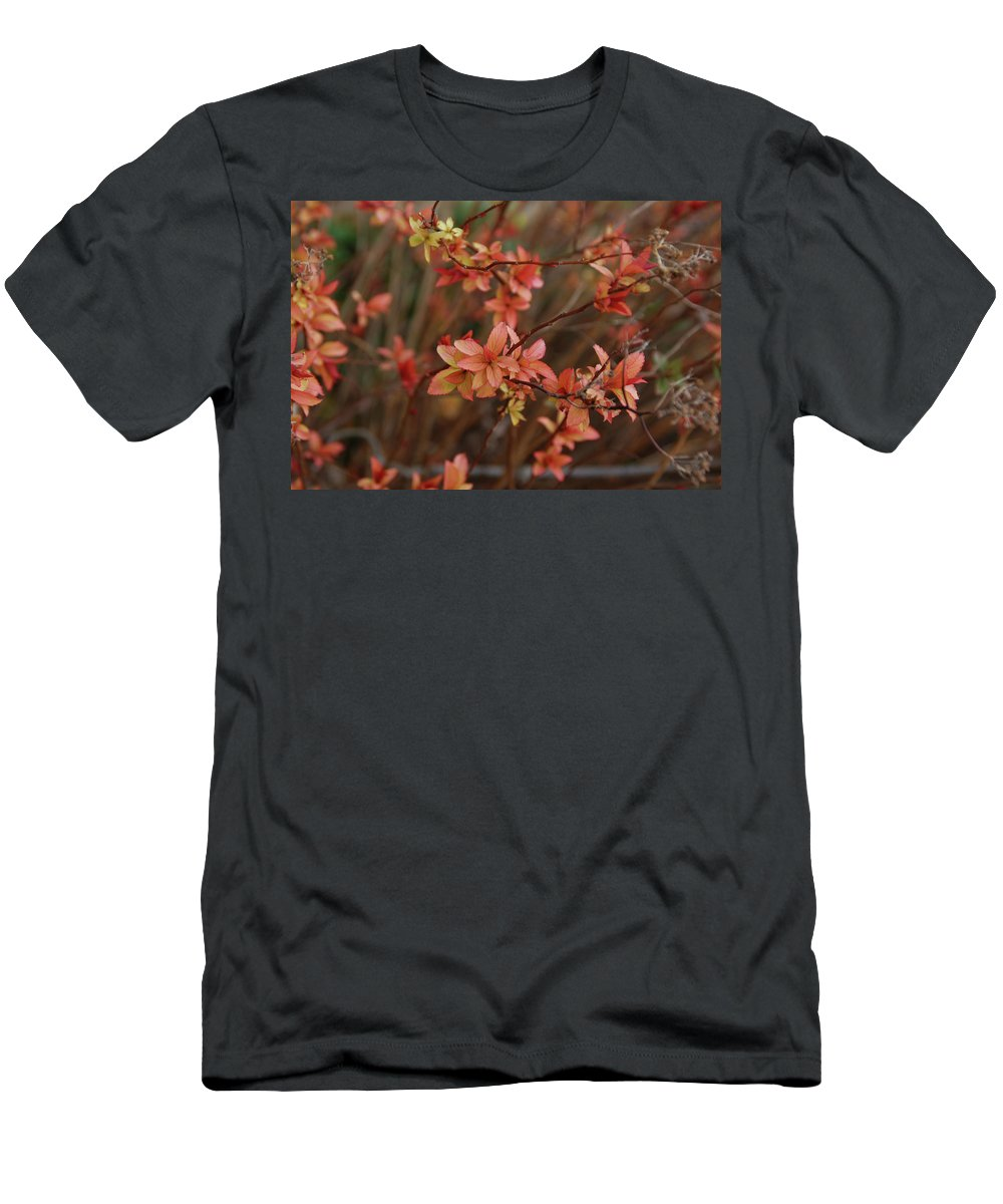 Gardens Men's T-Shirt (Athletic Fit) featuring the photograph Spirea 1280 by Guy Whiteley