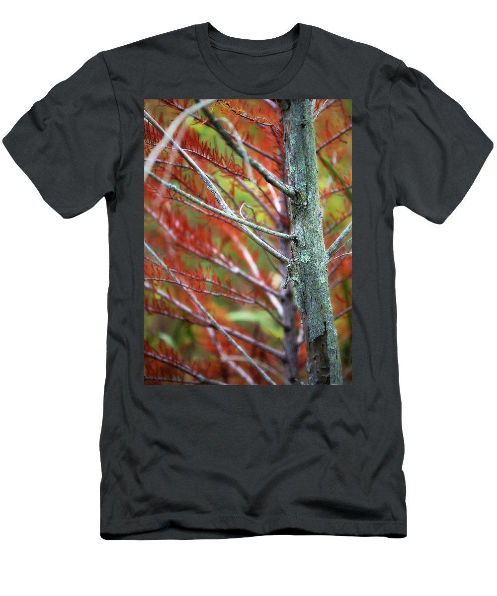 Men's T-Shirt (Athletic Fit) featuring the photograph Autumn Colors 25 by Scott Fracasso