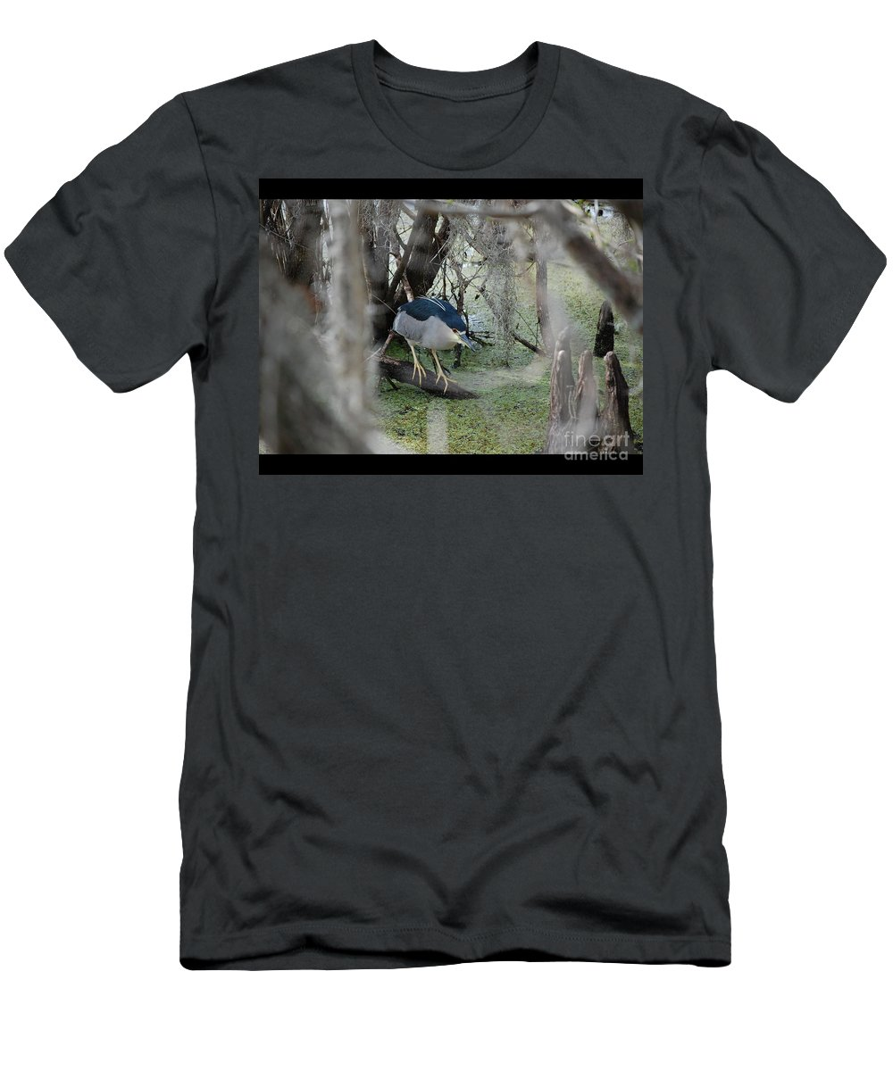 Heron Men's T-Shirt (Athletic Fit) featuring the photograph Black Crowned Night Heron by Robert Meanor