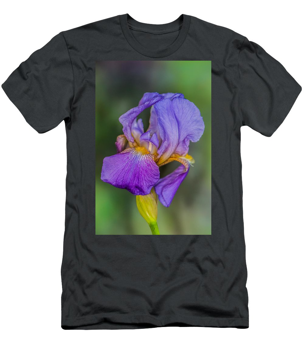 Flower Men's T-Shirt (Athletic Fit) featuring the photograph Purple Iris by Randy Walton