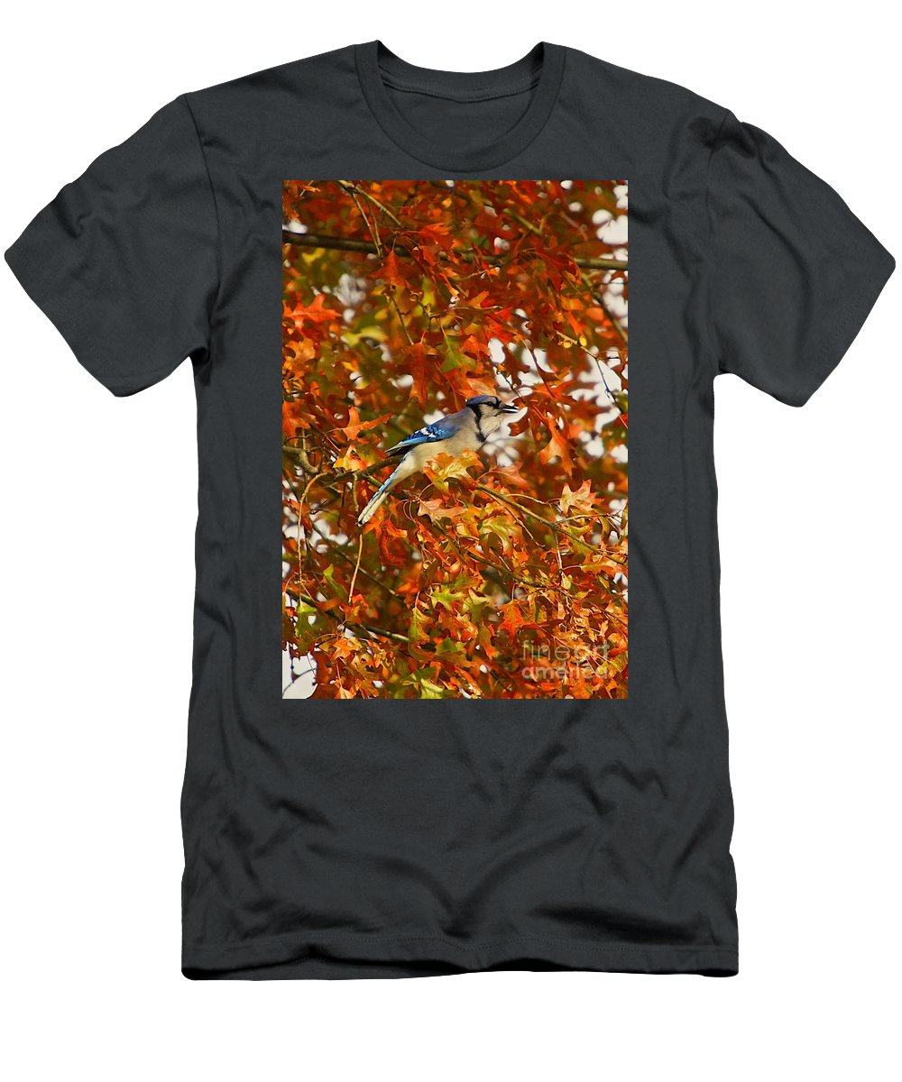 Bird Men's T-Shirt (Athletic Fit) featuring the photograph Blue Jay by Robert Pearson
