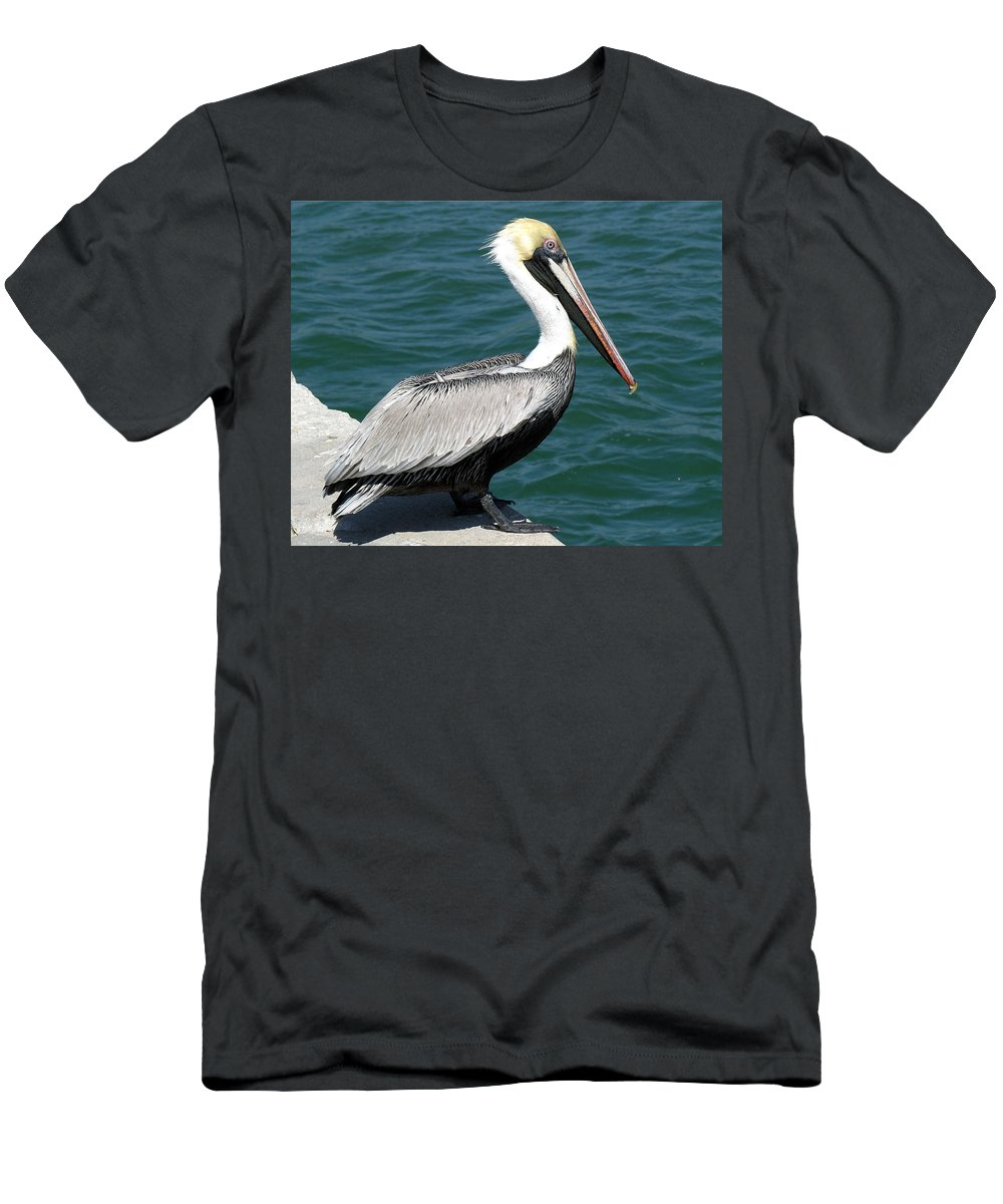 Pelecanus; Occidentalis; American; Brown; Pelican; Bird; Sea; Seabird; Ocean; Space; Coast; Cape; Ca Men's T-Shirt (Athletic Fit) featuring the photograph Brown Pelican by Allan Hughes
