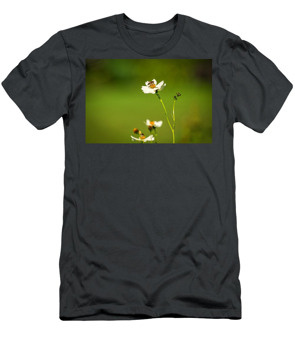 Wales Men's T-Shirt (Athletic Fit) featuring the photograph Busy Bee by Mark Llewellyn