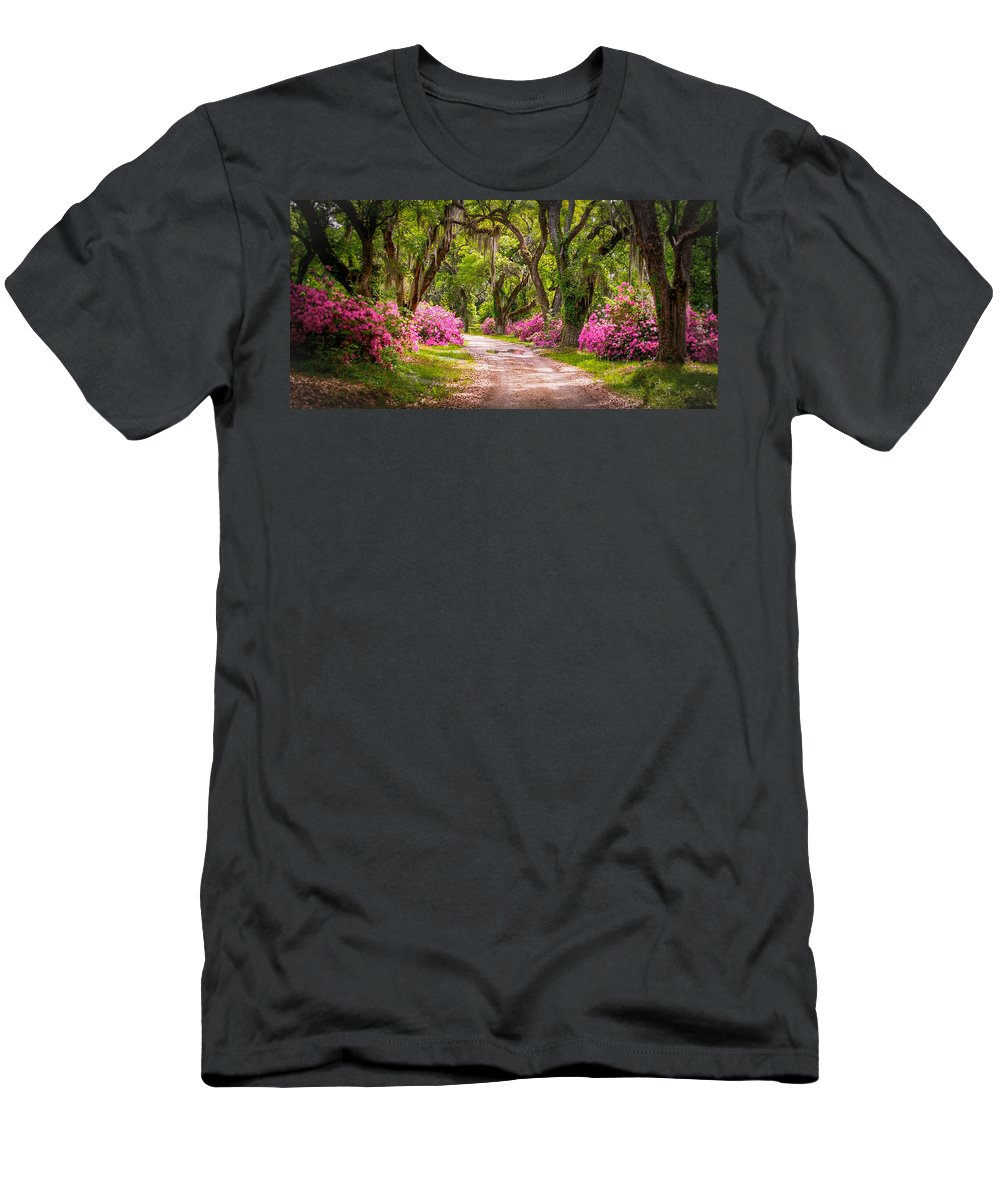Louisiana Men's T-Shirt (Athletic Fit) featuring the photograph Catalpa Alley by Bonnie Marquette