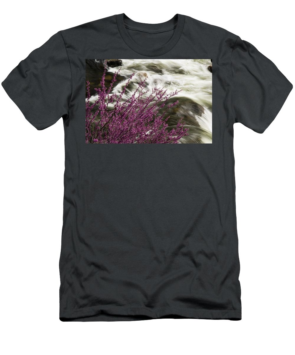 California Scenes Men's T-Shirt (Athletic Fit) featuring the photograph Cranberry Gulch by Norman Andrus
