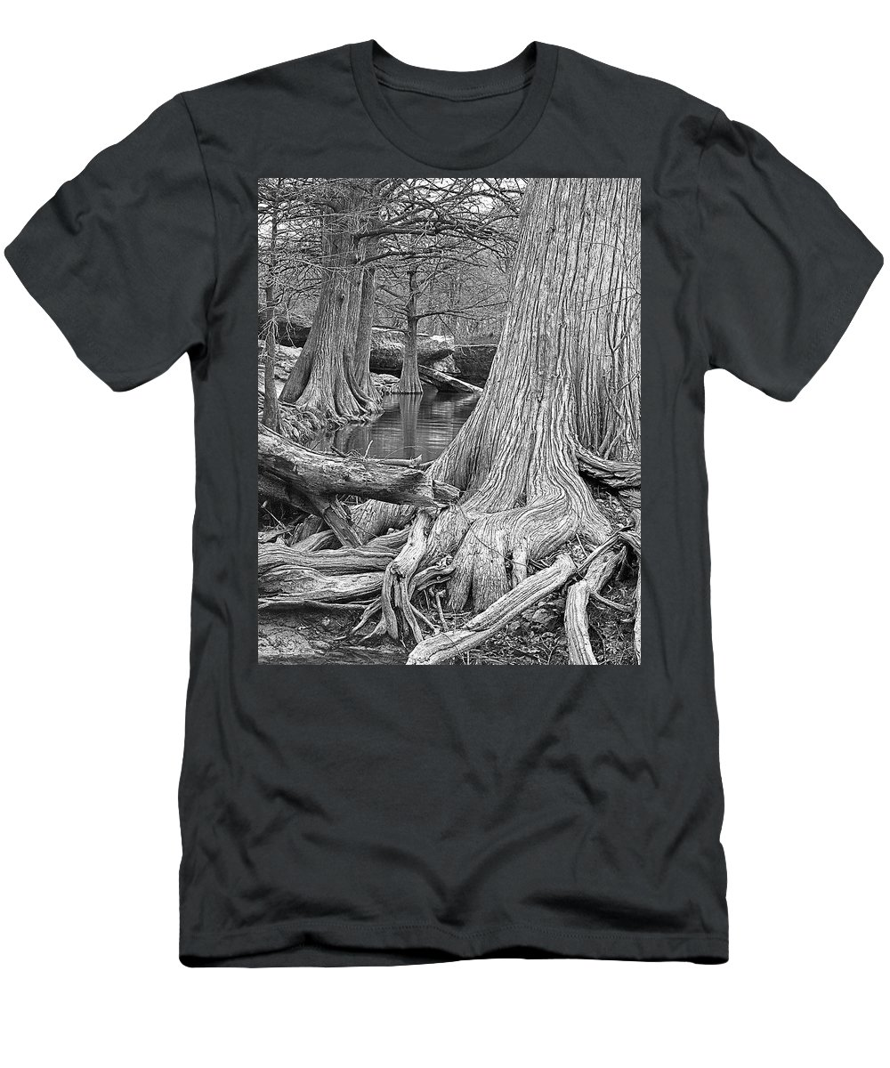 Trees Men's T-Shirt (Athletic Fit) featuring the photograph Cypress Trees I V by Jim Smith