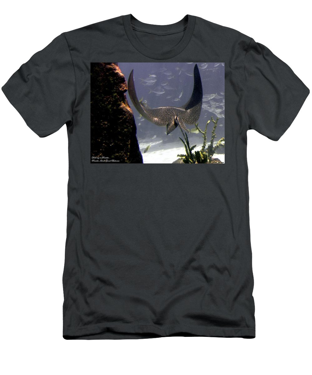 Fish Men's T-Shirt (Athletic Fit) featuring the photograph Devilray In Paradise by Robert Meanor