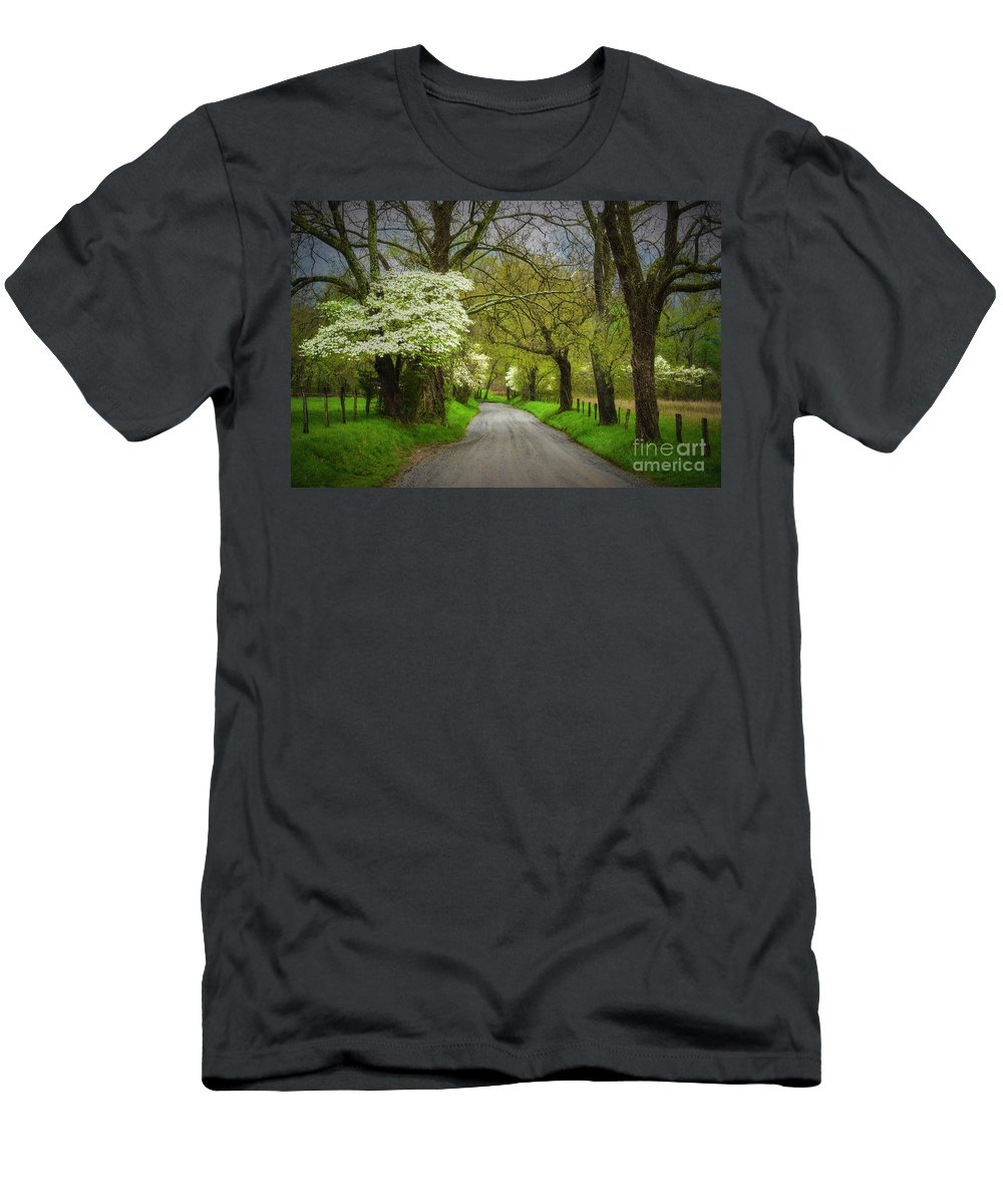 Nature Men's T-Shirt (Athletic Fit) featuring the photograph Dogwood Trail, Smoky Mountain, Tennessee by Stanton Tubb