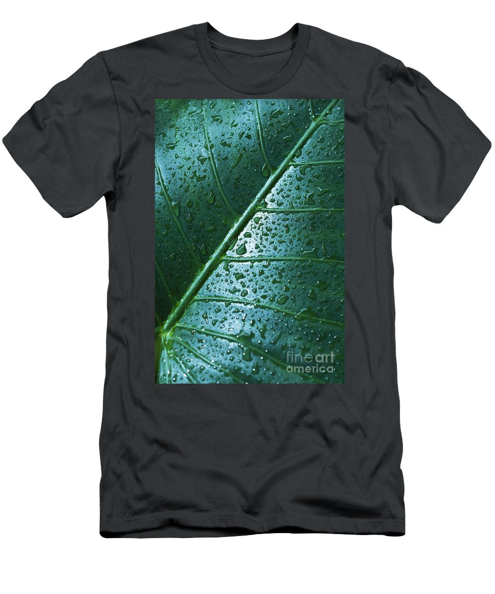 Abstract Men's T-Shirt (Athletic Fit) featuring the photograph Elephant Ear Leaf by Dana Edmunds - Printscapes