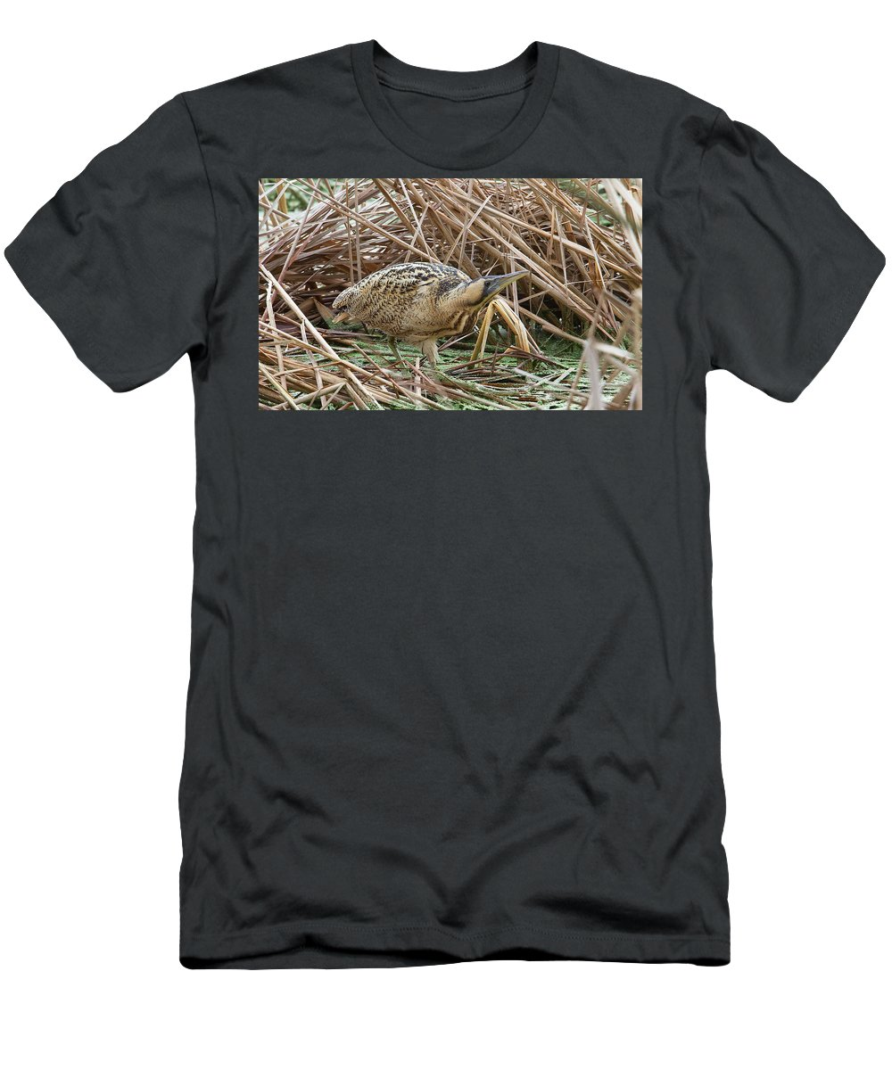 Bittern Men's T-Shirt (Athletic Fit) featuring the photograph European Bittern by Bob kemp