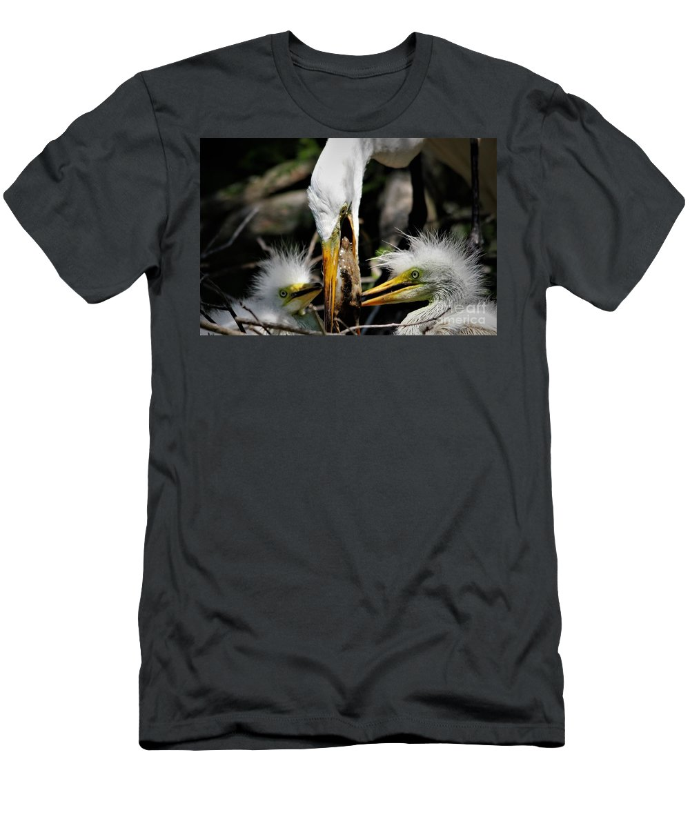 Great White Egret Men's T-Shirt (Athletic Fit) featuring the photograph Feeding Time by Paulette Thomas