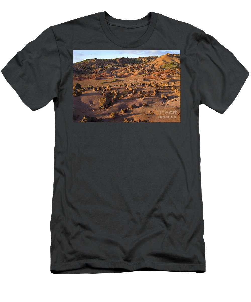 Afternoon Men's T-Shirt (Athletic Fit) featuring the photograph Garden Of The Gods by Ron Dahlquist - Printscapes