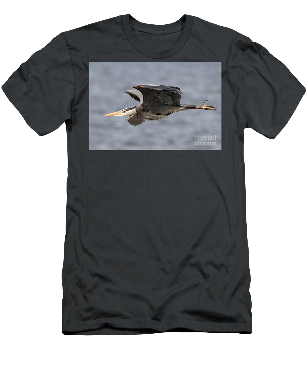 Great Blue Heron Men's T-Shirt (Athletic Fit) featuring the photograph Great Blue Heron by Loriannah Hespe