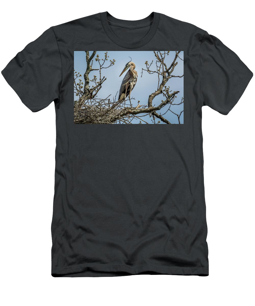 Nature Men's T-Shirt (Athletic Fit) featuring the photograph Great Blue Heron by Michael Cunningham