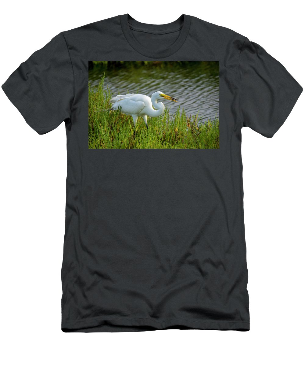 Bolsa Chica Ethological Reserve Men's T-Shirt (Athletic Fit) featuring the photograph Great White Egret 2 by Donald Pash