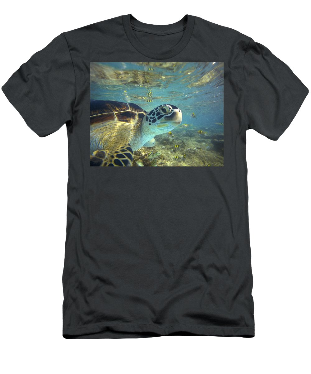 00451417 T-Shirt featuring the photograph Green Sea Turtle Balicasag Island by Tim Fitzharris