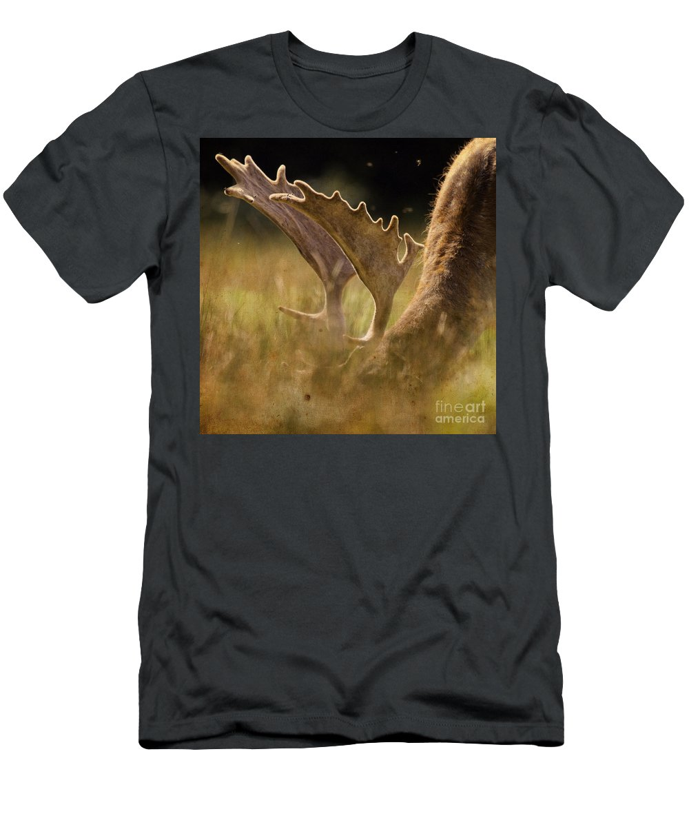 Fallow Deer Men's T-Shirt (Athletic Fit) featuring the photograph Having A Lunch by Angel Ciesniarska