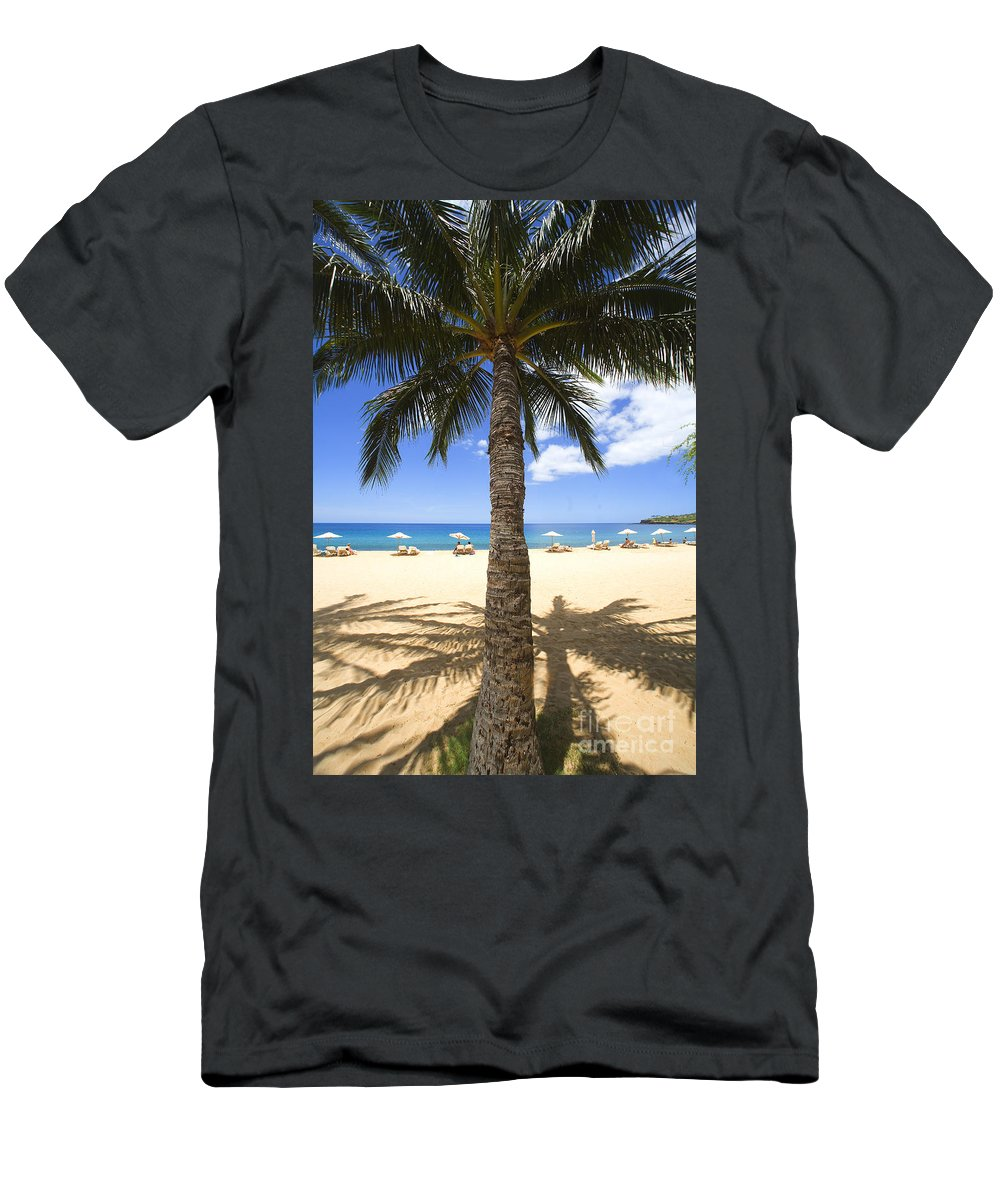 Beach Men's T-Shirt (Athletic Fit) featuring the photograph Hulopoe Beach Palm Tree by Ron Dahlquist - Printscapes