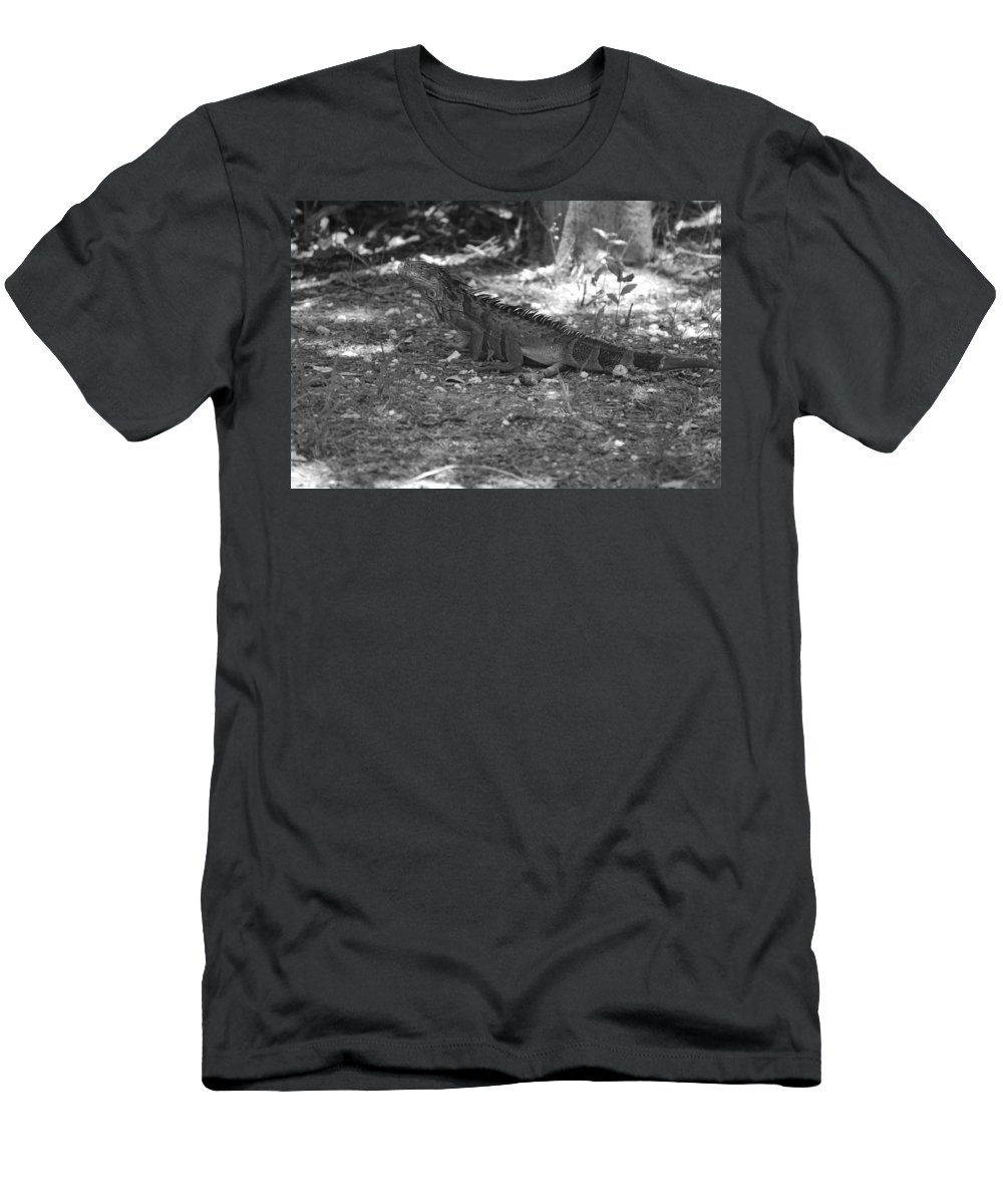 Black And White Men's T-Shirt (Athletic Fit) featuring the photograph I Iguana by Rob Hans