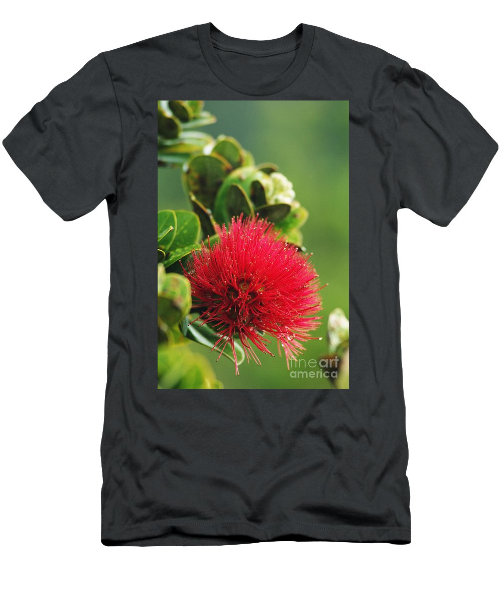 Bloom Men's T-Shirt (Athletic Fit) featuring the photograph Ohia Lehua by Greg Vaughn - Printscapes