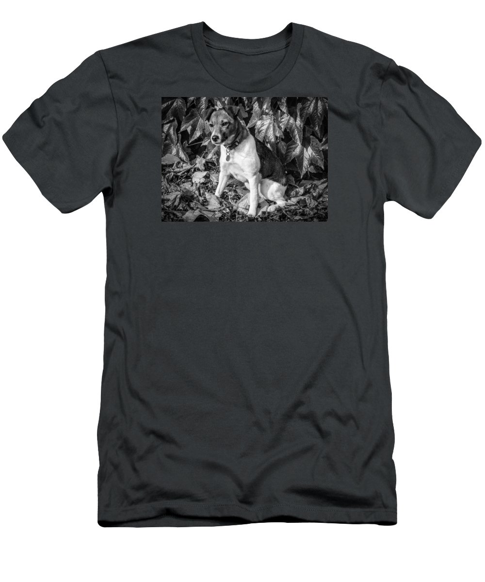 Dog Men's T-Shirt (Athletic Fit) featuring the photograph On The Leaves by Nick Bywater