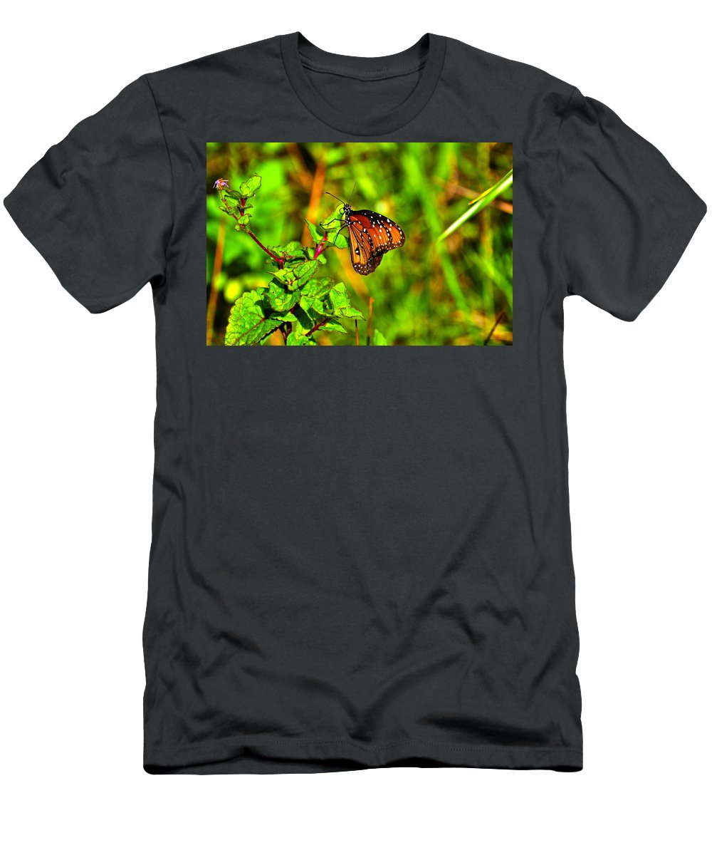 Butterfly Men's T-Shirt (Athletic Fit) featuring the photograph Orange Butterfly Too by Randy Aveille