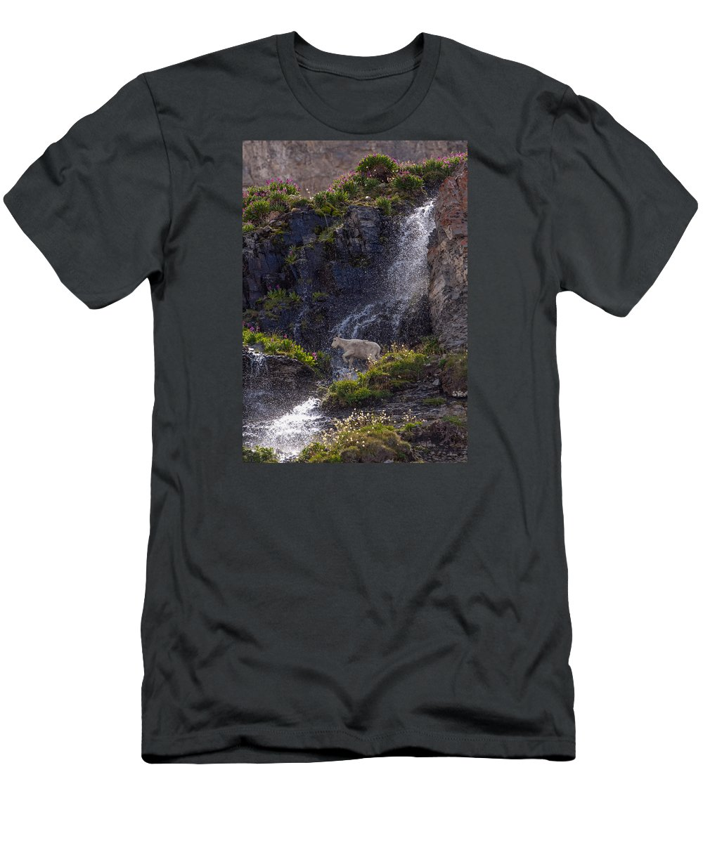 Mountain Goat Men's T-Shirt (Athletic Fit) featuring the photograph Paradise by Kent Keller