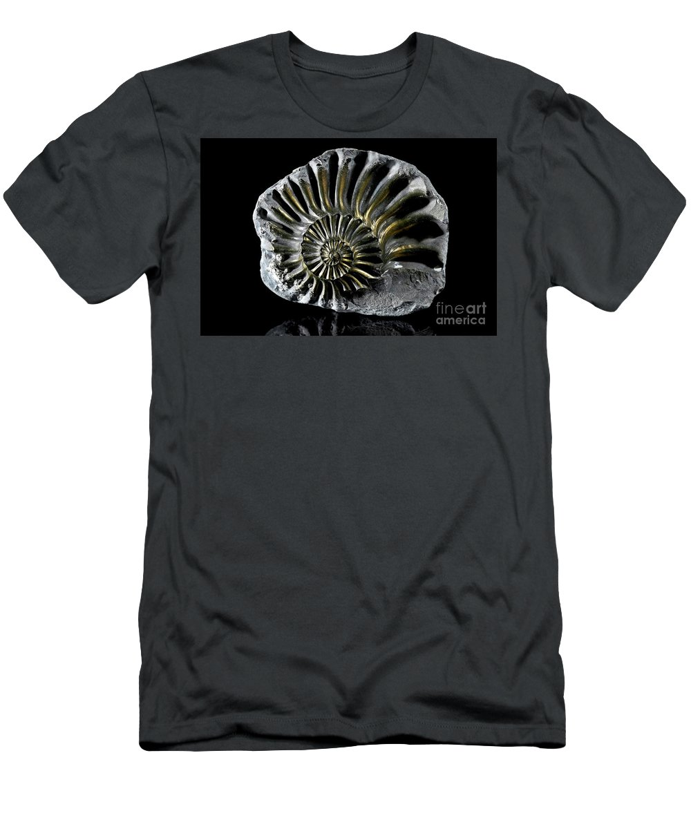 Amonite Men's T-Shirt (Athletic Fit) featuring the photograph Pyritized Ammonite by Stela Knezevic