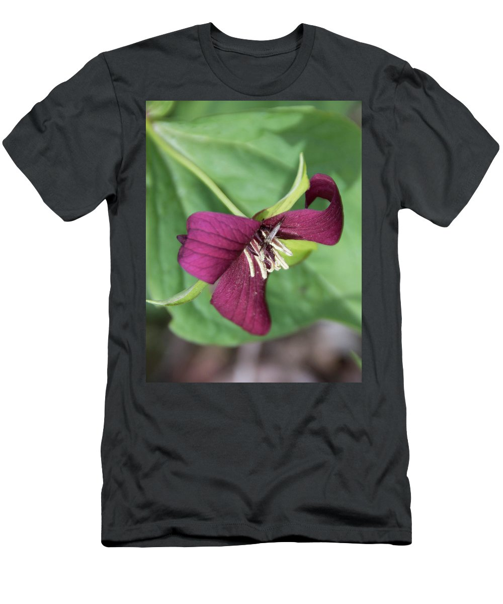 Flowers Men's T-Shirt (Athletic Fit) featuring the photograph Red Trillium by Dawn Dasharion