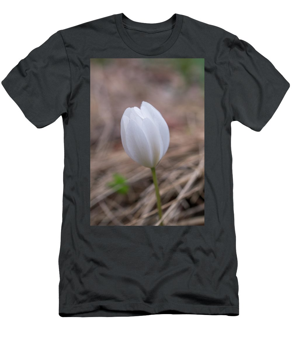 Spring Flowers Men's T-Shirt (Athletic Fit) featuring the photograph Spring Flower by Lilia D