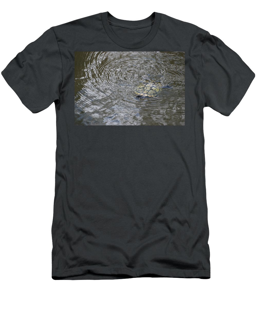 Water Men's T-Shirt (Athletic Fit) featuring the photograph The Swimming Turtle by Rob Hans