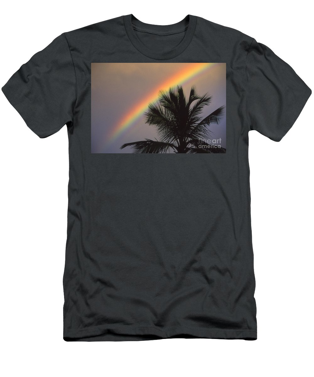 Afternoon Men's T-Shirt (Athletic Fit) featuring the photograph Top Of A Palm Tree by Ron Dahlquist - Printscapes