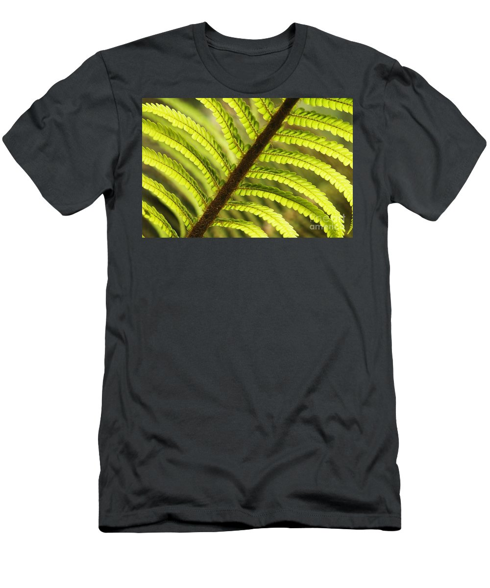 Abstract Men's T-Shirt (Athletic Fit) featuring the photograph Tree Fern Frond by Greg Vaughn - Printscapes
