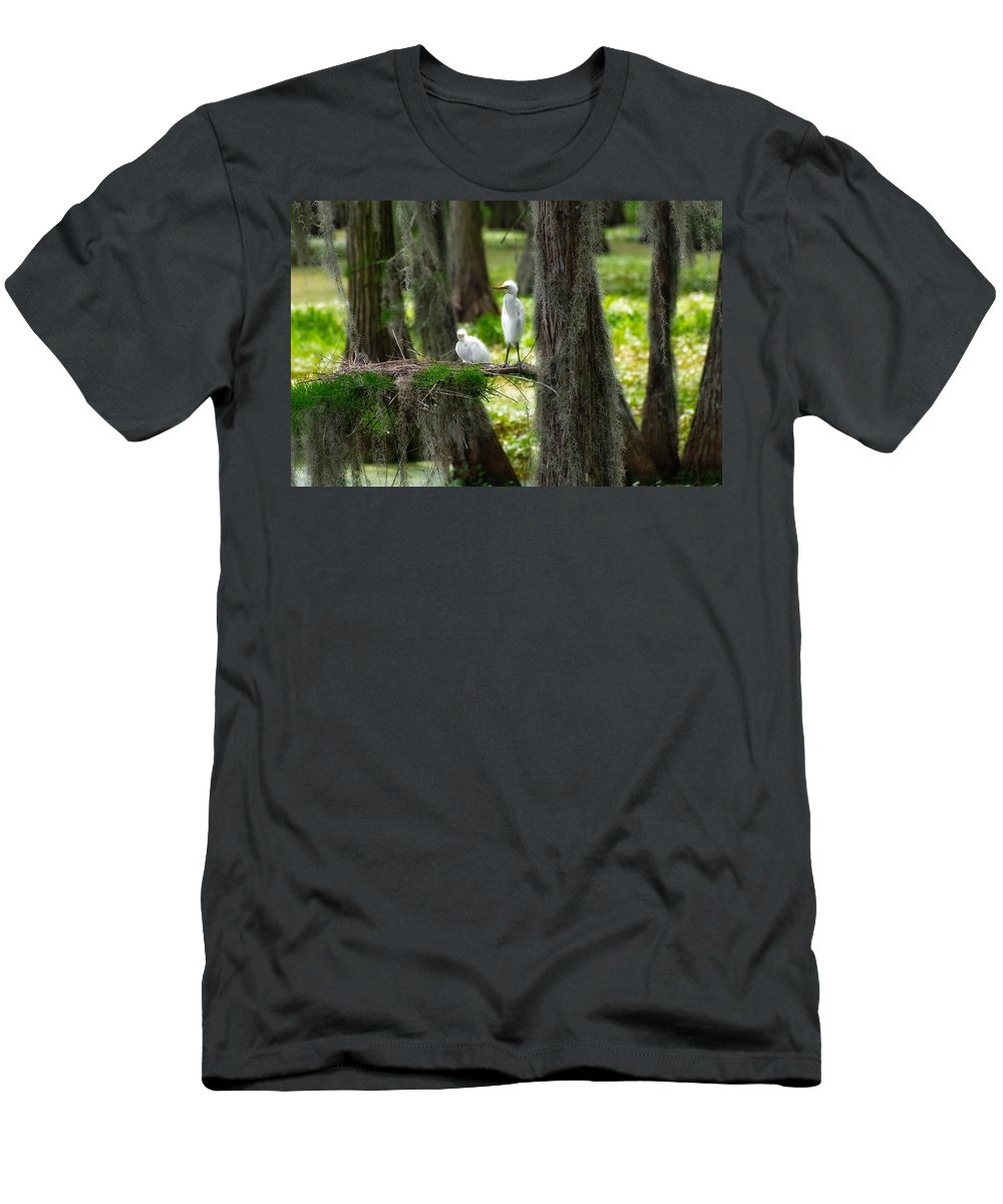 Bird Men's T-Shirt (Athletic Fit) featuring the photograph Two Baby Great Egrets And Nest by Rich Leighton