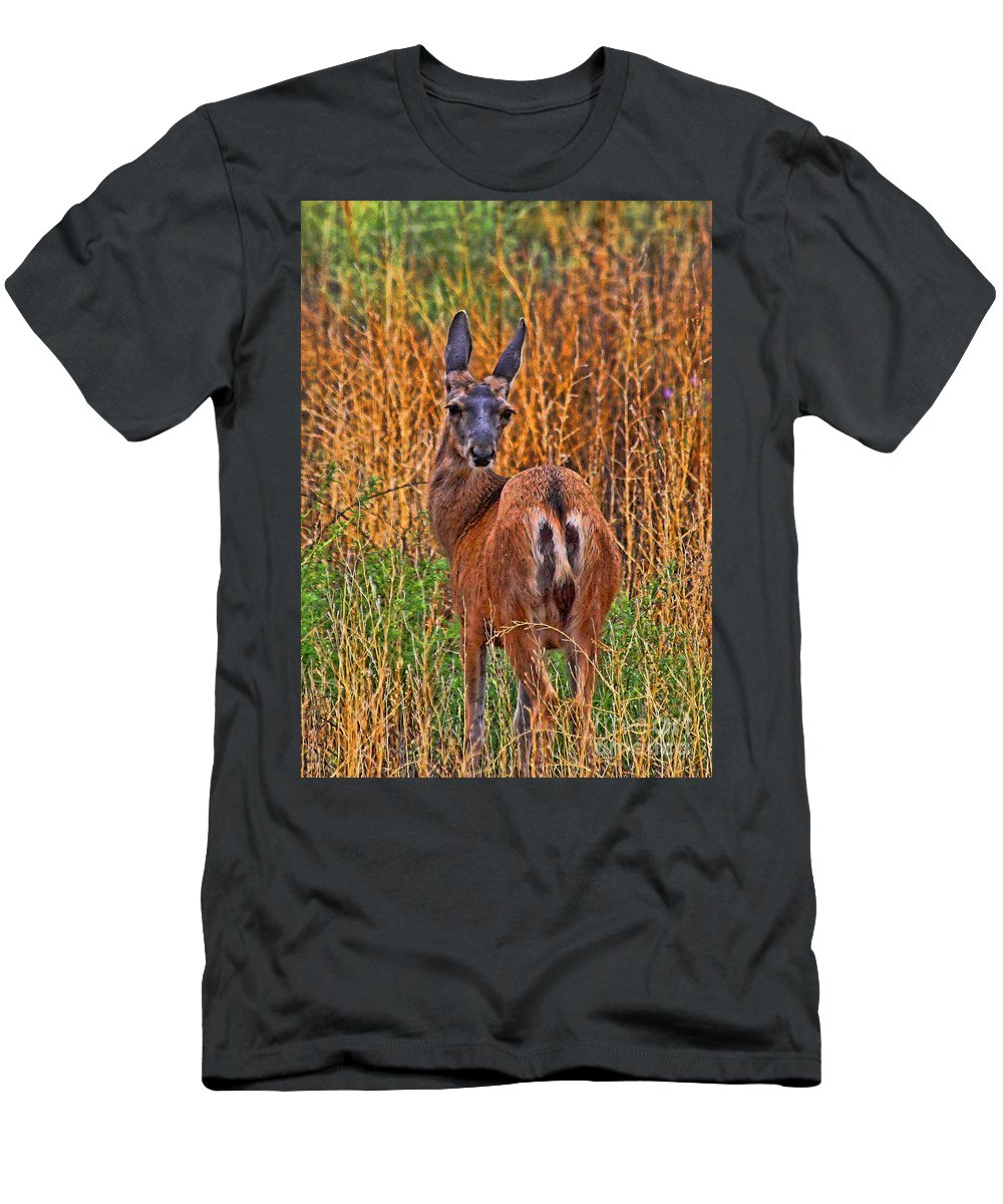 Deer T-Shirt featuring the photograph You Looking At Me by Tommy Anderson