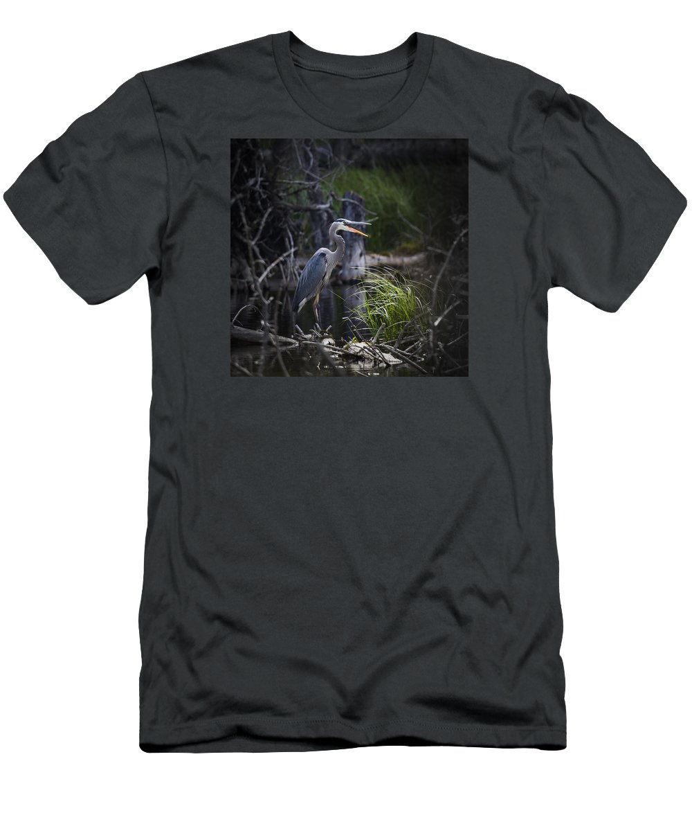 Alberta Men's T-Shirt (Athletic Fit) featuring the photograph Great Blue Heron by Brandon Smith