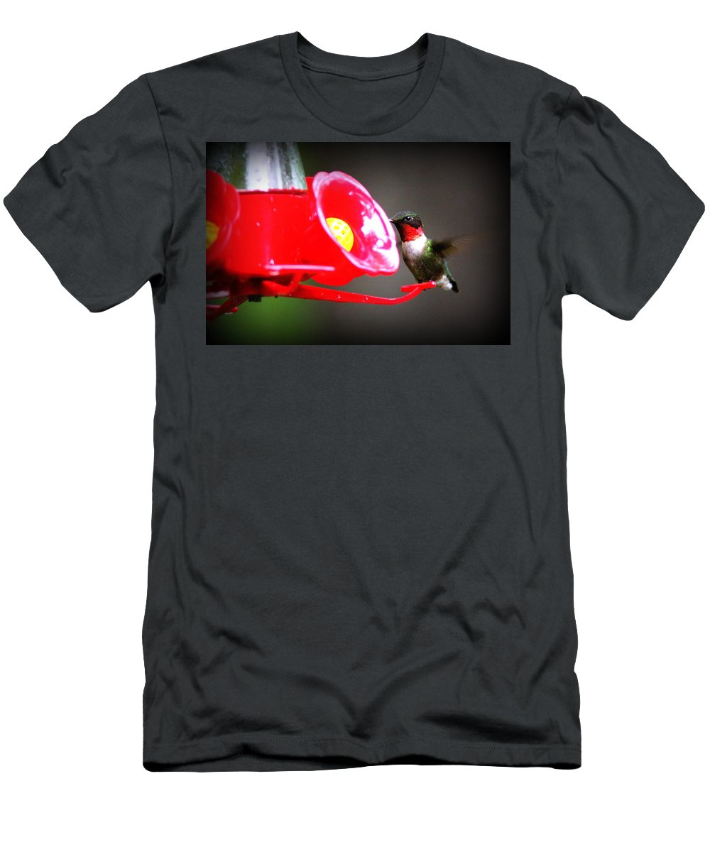 Hummingbird Men's T-Shirt (Athletic Fit) featuring the photograph 1175 - Hummingbird by Travis Truelove