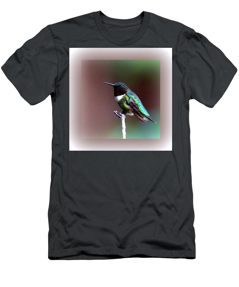 Hummingbird Men's T-Shirt (Athletic Fit) featuring the photograph 1281 - Hummingbird by Travis Truelove