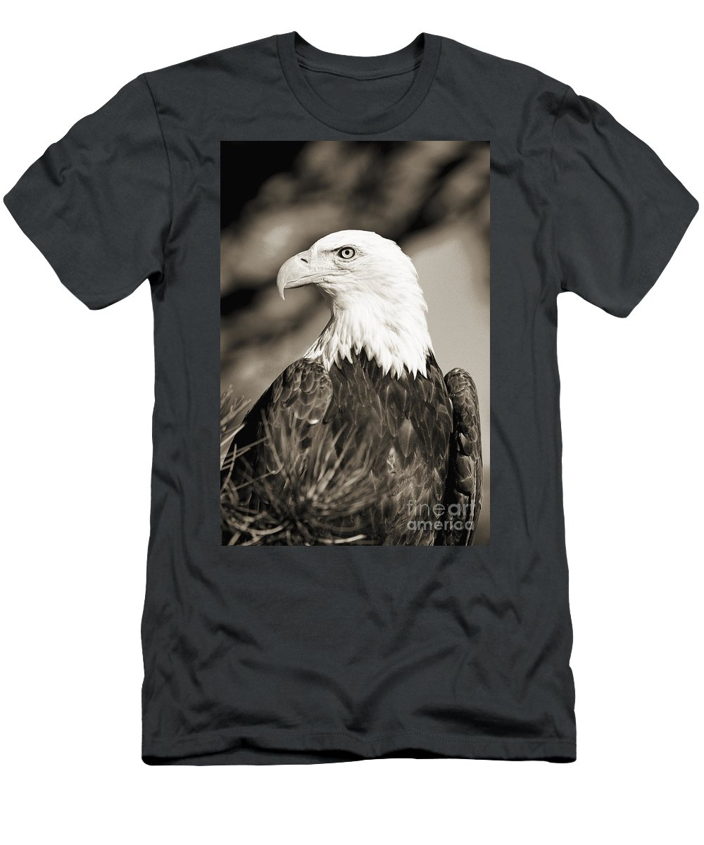 Afternoon Men's T-Shirt (Athletic Fit) featuring the photograph Bald Eagle by John Hyde - Printscapes