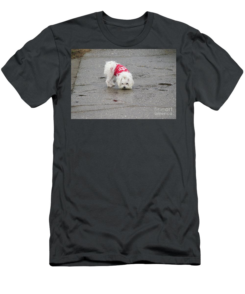 Dog Men's T-Shirt (Athletic Fit) featuring the photograph My Small Dog by Elvira Ladocki