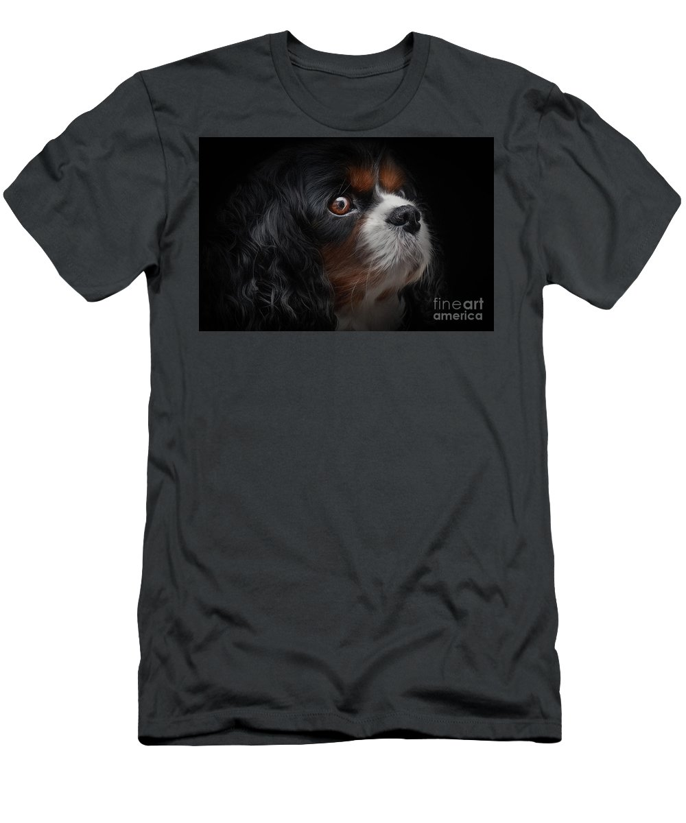 Adorable Men's T-Shirt (Athletic Fit) featuring the photograph Cavalier King Charles by Shaun Wilkinson