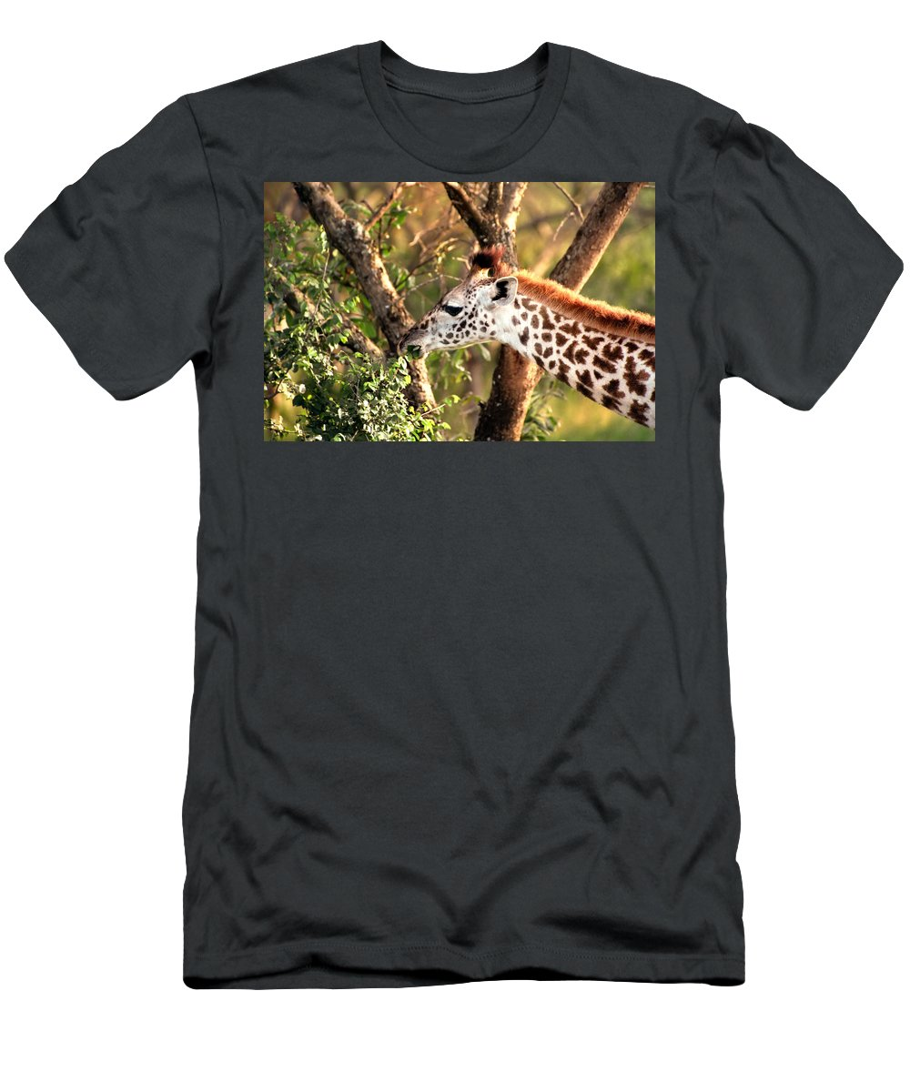Giraffe Men's T-Shirt (Athletic Fit) featuring the photograph Giraffe by Sebastian Musial